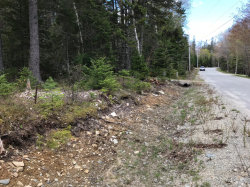 Photo of 23 Bass Harbor Woods Road, Tremont, ME 04653 (MLS # 1418711)