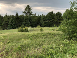 Photo of 22 Farm Edge Road, Sullivan, ME 04664 (MLS # 1420549)