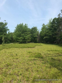 Photo of 130 Mines Road, Blue Hill, ME 04614 (MLS # 1423876)