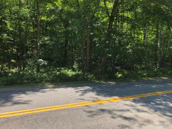 Photo of Lot 8 Route 11, Newfield, ME 04095 (MLS # 1424486)
