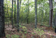 Photo of Lot 4 Loop Lane, Wells, ME 04090 (MLS # 1424567)