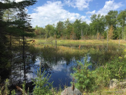 Photo of Lot 9 Surry by the Bay Lane, Surry, ME 04684 (MLS # 1426439)