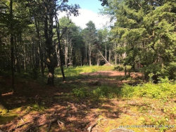 Photo of Lot C Little Round Top Run, Freeport, ME 04032 (MLS # 1430393)