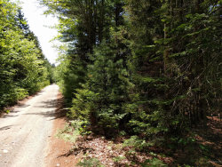 Photo of 0 Old County Road, Brooklin, ME 04616 (MLS # 1430636)