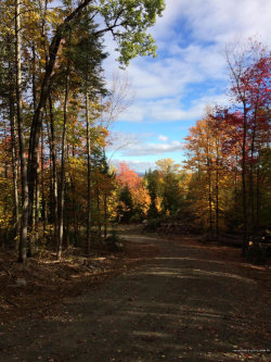 Photo of 00 Steadmans Landing Road, Dover Foxcroft, ME 04426 (MLS # 1432555)