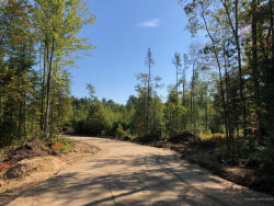 Photo of Lot 2 Whitetail Way, North Yarmouth, ME 04097 (MLS # 1434179)