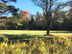 Photo of 0 Map 109 Lot 18 Point Road, Hancock, ME 04640 (MLS # 1436946)