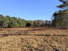 Photo of T B D Foreside Road, Topsham, ME 04086 (MLS # 1438405)