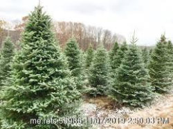 Photo of Lot 4 Christmas Creek Subdivision, Cumberland, ME 04021 (MLS # 1438511)