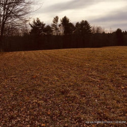Photo of 0 Hodsdon Road (Lot B), Pownal, ME 04069 (MLS # 1440932)