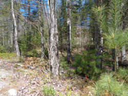 Photo of 2 Pond House Lane, Blue Hill, ME 04614 (MLS # 1454106)