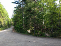 Photo of Lot 42 Lakeview Road, Penobscot, ME 04476 (MLS # 1454188)