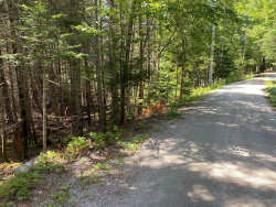 Photo of 0 Thomas Bay Lane, Bar Harbor, ME 04609 (MLS # 1459709)