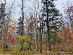Photo of 00 Beech Hill Road, Blue Hill, ME 04614 (MLS # 1474645)