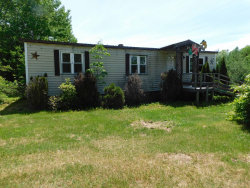 Photo of 197 Jacob Buck Pond Road, Bucksport, ME 04416 (MLS # 1455864)