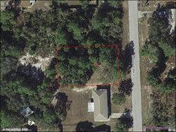 Photo of 1610 Meadowbrook Street, Lake Placid, FL 33852 (MLS # 273926)
