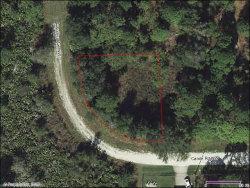 Photo of 501 Carole Road NW, Lake Placid, FL 33852 (MLS # 273931)