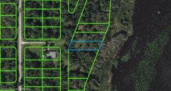 Photo of 915 Kirby Avenue, Lake Placid, FL 33852 (MLS # 273980)