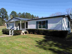 Photo of 1362 Etheridge Drive, Auburn, GA 30011 (MLS # 5981408)