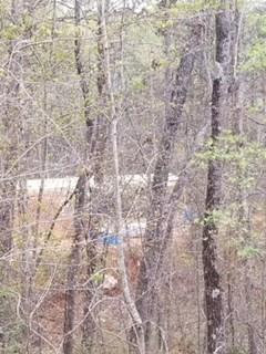 Photo of Lot 46 Baker Street, Dahlonega, GA 30533 (MLS # 5996631)