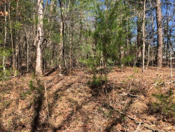 Photo of 2616 Paradise Valley Road, Cleveland, GA 30528 (MLS # 5971744)