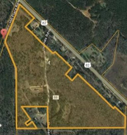 Photo of 800 Hill Place Road, Lot 0, Georgetown, GA 39854 (MLS # 6063899)