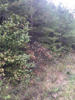 Photo of 00 Deer Trail, Lot 152, Dahlonega, GA 30533 (MLS # 6089088)