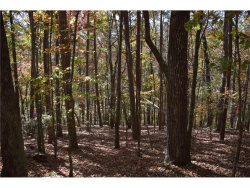 Photo for 84 Pine Trail, Dahlonega, GA 30533 (MLS # 5335878)