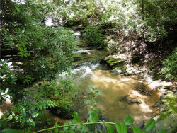 Photo of 4.51 River Ridge Road S, Dahlonega, GA 30533 (MLS # 5896188)