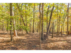 Photo of 0 Laceola Road, Cleveland, GA 30528 (MLS # 5930178)