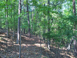 Photo of 0 Calhoun Road, Dahlonega, GA 30533 (MLS # 5995609)