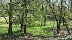 Photo of 0 Stacey Drive, Cleveland, GA 30528 (MLS # 5995728)