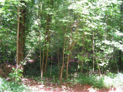 Photo of Lot 4 Corbin Lane, Dahlonega, GA 30533 (MLS # 6027060)