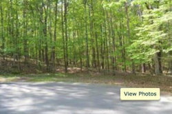 Photo of 110 Fort Smith Court, Lot 122, Waleska, GA 30183 (MLS # 6068771)