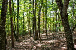 Photo of 0 Arrow Ridge Road, Lot 0, Dahlonega, GA 30533 (MLS # 6093867)
