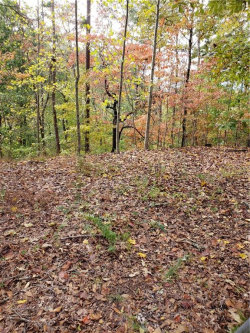 Photo of 7613 Willow Lane, Lot 154, Murrayville, GA 30564 (MLS # 6096651)