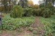 Photo of 2513 Austell Road SW, Lot 0, Marietta, GA 30008 (MLS # 6098684)