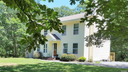 Photo of 31 Smith Rd, Shirley, NY 11967 (MLS # 3009647)