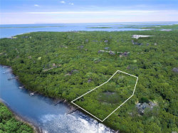 Photo of 78 Inlet View Path, East Moriches, NY 11940 (MLS # 3104593)