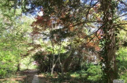 Photo of 15 Old Cow Path, Miller Place, NY 11764 (MLS # 3161657)