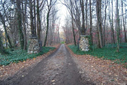 Photo of Lot 2 Gate Rd, Nissequogue, NY 11780 (MLS # 3096553)