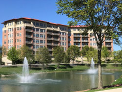 Photo of 40 Prairie Park Drive, Unit Number 303, WHEELING, IL 60090 (MLS # 09639446)