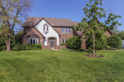 Photo of 1213 Woodview Drive, PROSPECT HEIGHTS, IL 60070 (MLS # 09656759)