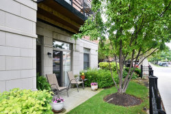Photo of 757 W 14th Place, Unit Number 1B, CHICAGO, IL 60607 (MLS # 09667359)