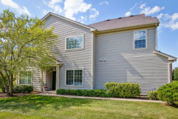 Photo of 290 Nicole Drive, Unit Number A, SOUTH ELGIN, IL 60177 (MLS # 09683975)