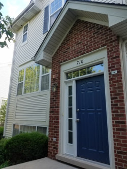 Photo of 710 River Mill Parkway, WHEELING, IL 60090 (MLS # 09690157)