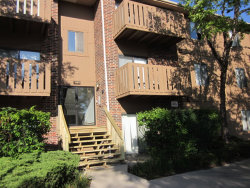 Photo of 1091 Rodenburg Road, Unit Number 103, ROSELLE, IL 60172 (MLS # 09692517)
