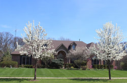 Photo of 3302 Greenwood Lane, ST. CHARLES, IL 60175 (MLS # 09693347)