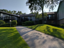 Photo of 950 E Old Willow Road, Unit Number 201, PROSPECT HEIGHTS, IL 60070 (MLS # 09697000)