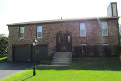 Photo of 290 Stockport Court, ROSELLE, IL 60172 (MLS # 09698951)